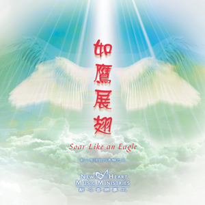 Picture of 如鷹展翅 (專輯) Soar Like An Eagle (Album)